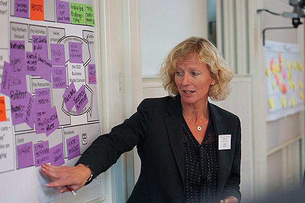 Karin Broman, Free Wheel Consulting