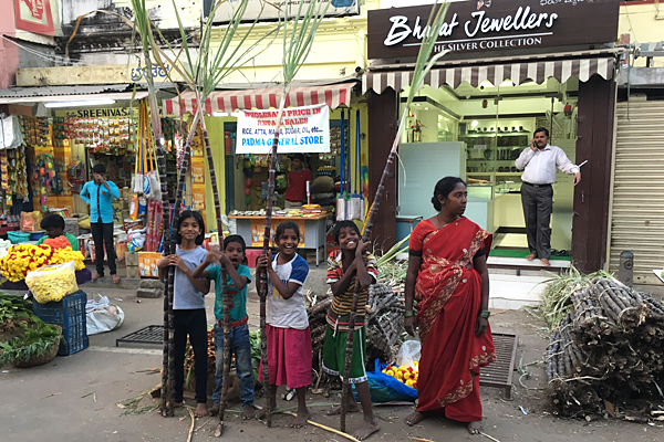 Sugarcane vendors in downtown Bangalore, India